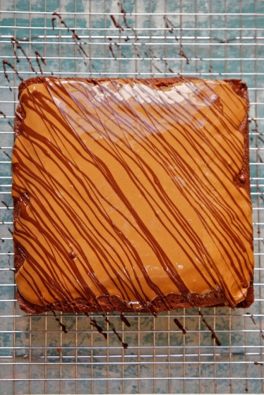 Iced gingerbread and dark chocolate cake on a baking rack