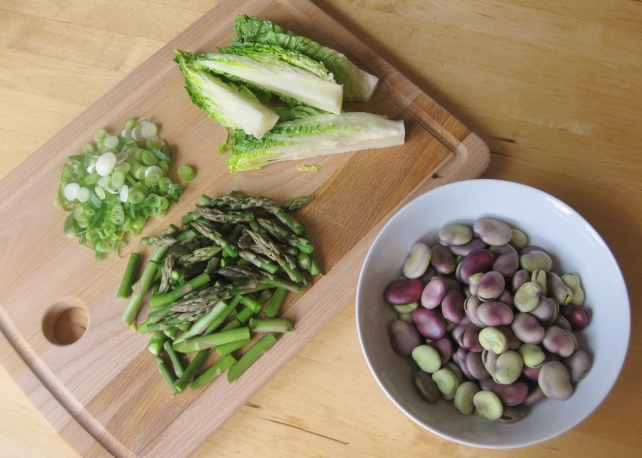 Prepared spring vegetables for La Vignarola (spring vegetable stew)