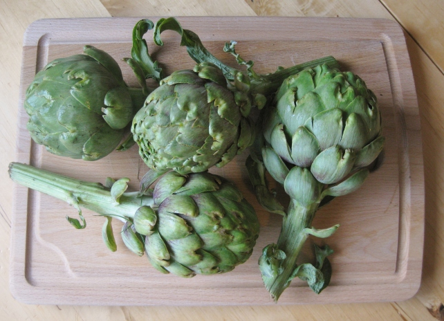 Homegrown globe artichokes