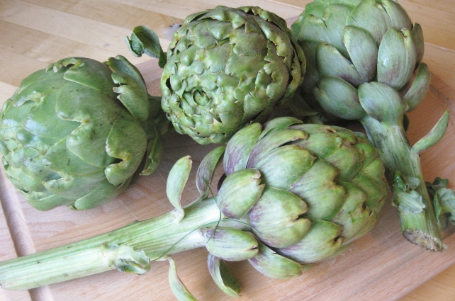 Fresh homegrown globe artichokes