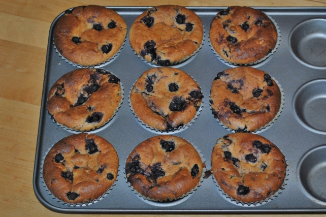Baked homemade blueberry muffins