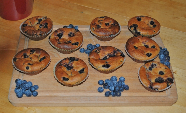 Homemade blueberry muffins 2