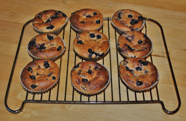 Homemade blueberry muffins on a cooling rack