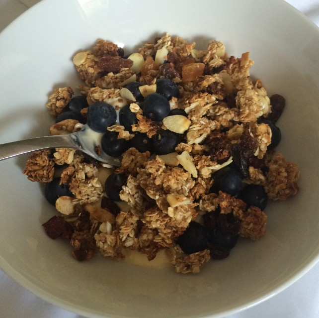 Homemade fruit and nut granola with yogurt and blueberries