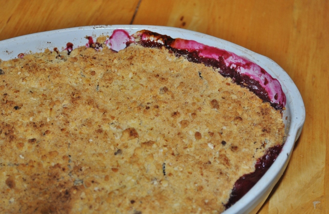 Close up of Seasonal autumn fruit crumble