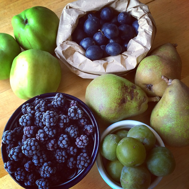 Seasonal autumn fruits for a crumble